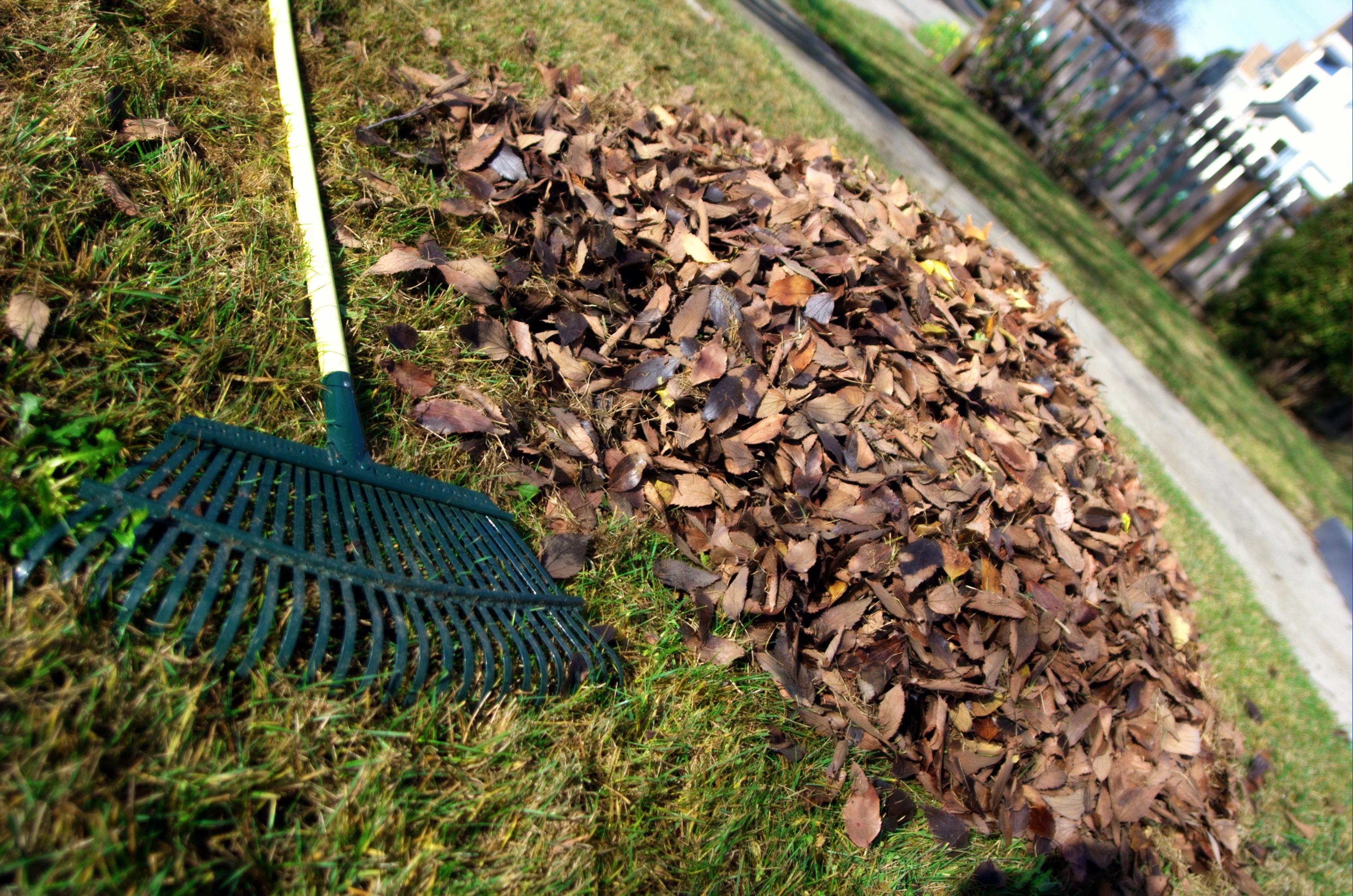 Artesia, CA - Official Website - Brush - Yard Waste